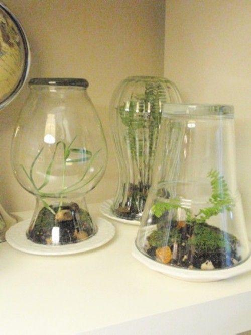 Simple DIY Home Terrarium | Shelterness