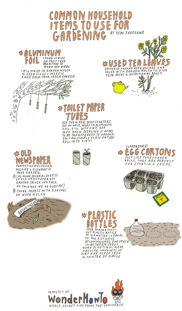 Some great ideas for reusing common items in the garden.