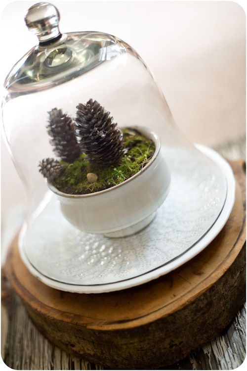 Winterscape Terrarium ~ could add some Christmas ribbon, etc. around base of bowl, for added colour & festivity!!