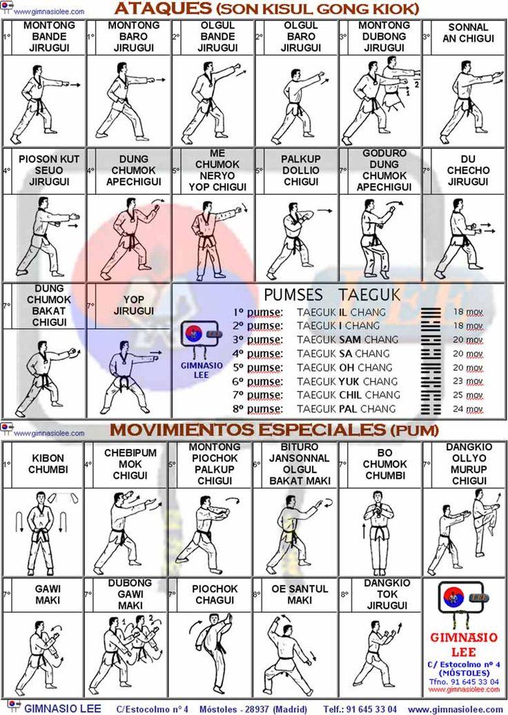Técnicas fundamentales hasta 1º dan. Ataques y movimientos especiales.