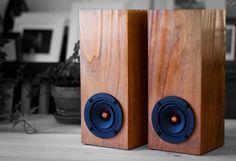 Salvage Audio Mini Tower Speaker