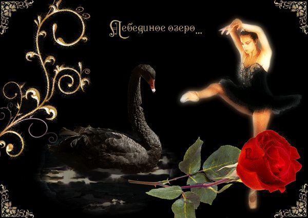 Swan Lake - a klasszikus zene