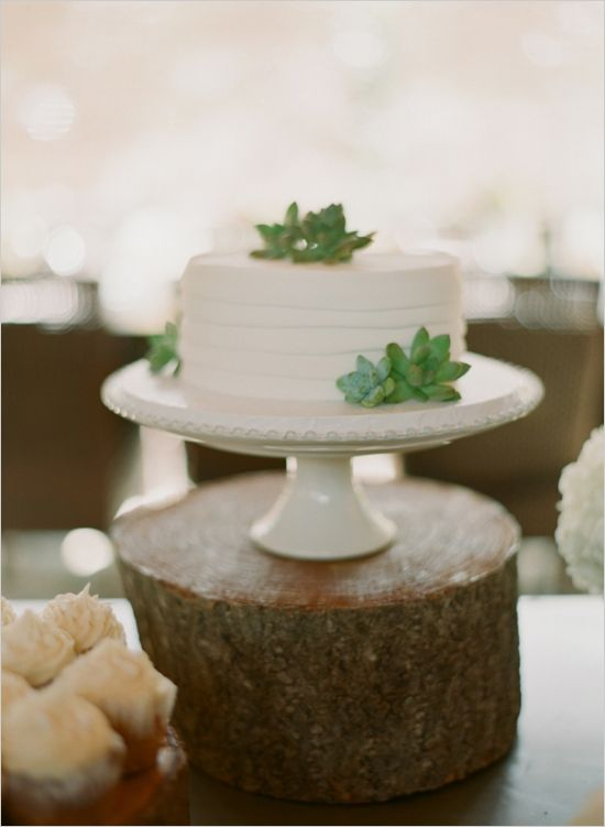 small wedding cake by blue ridge bakery #whiteweddingcake #classicwedding #smallweddingcake http://www.weddingchicks.com/2014/01/09/southern-wedding/