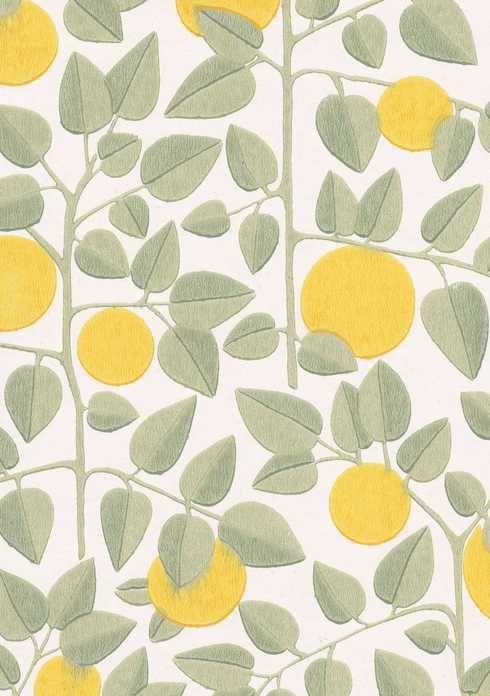 Tapettitehdas Pihlgren ja Ritola Oy - Appelsiini