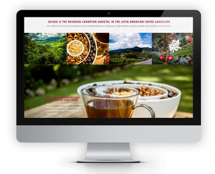 Our newest and most innovative website yet, FincaDeborah.com features large parallex images, animated counters, scrolling galleries and even a story book slider to showcase the history of Geisha coffee.  Each page is meticulously designed with bright photos and sleek and elegant layouts.  Custom designed social media icons and a newsletter sign up form completes each page.