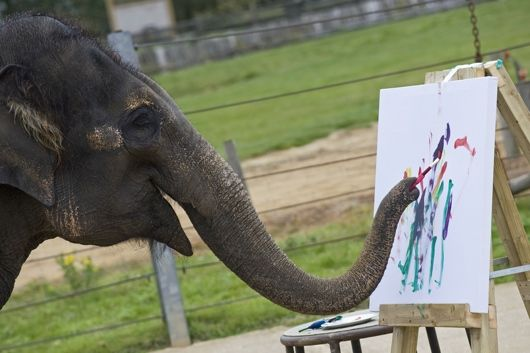 happy elephants | Happy Elephant Appreciation Day | MNN - Mother Nature Network