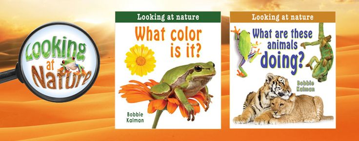 Looking at Nature series (Crabtree Publishing)_ this series describes fundamental learning concepts, such as shape, color, pattern, texture, size, sequence, and location. What makes this series distinct is that all of the examples, shown in photographs, come from nature and foster a greater understanding and interest in the natural world. Grades K-3