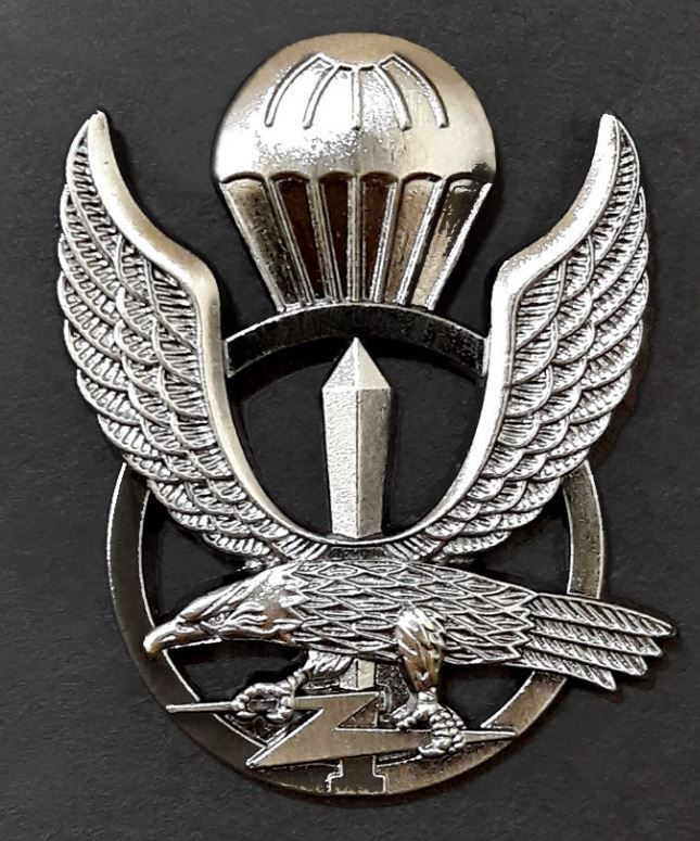 S.Korea Korean Army Special Forces Shoulder Sleeve Insignia Metal Badge Pin