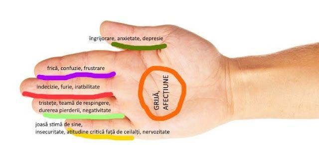 Fiecarui Deget Ii Sunt Asociate Doua Organe- Aceasta Metoda Japoneza Te Va Vindeca Intr-un Singur Minut | Pentru Suflet