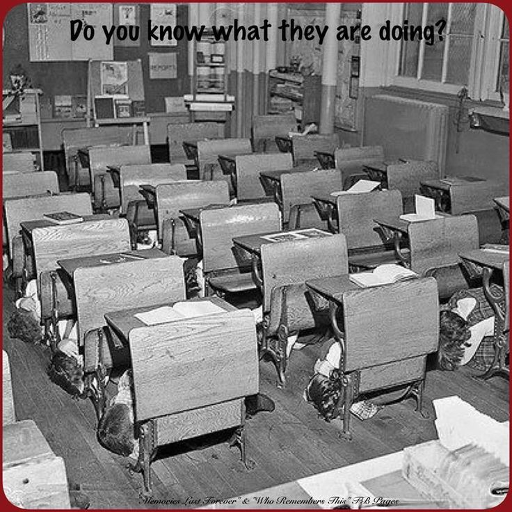 What Does A Stem Elementary School Look Like: 1000+ Images About Brings Back Memories On Pinterest