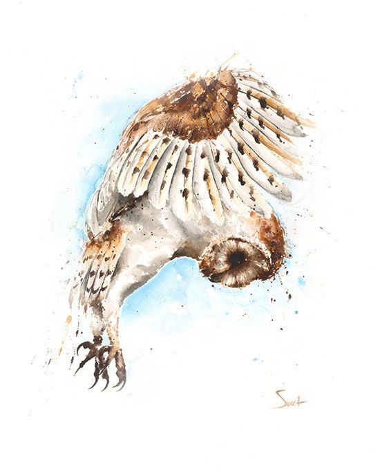 OWL ART PRINT barn owl print watercolor owl owl decor owl