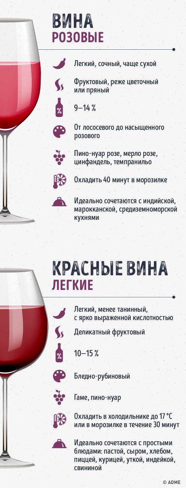 Мобильный LiveInternet Гид по винам сделает из вас настоящего сомелье | О_Самом_Интересном - Все самое интересное |