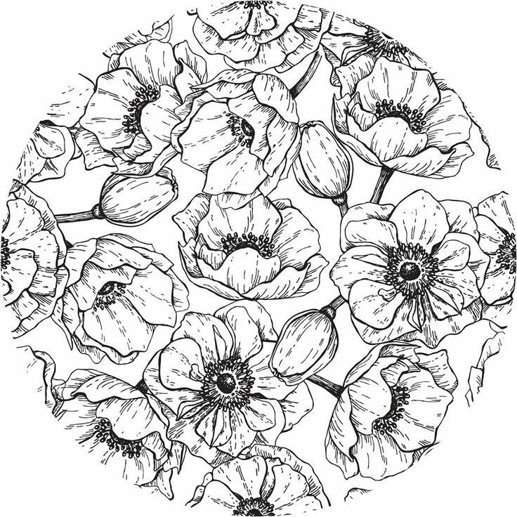 1692 best Coloring - Floral images on Pinterest   Coloring books ...