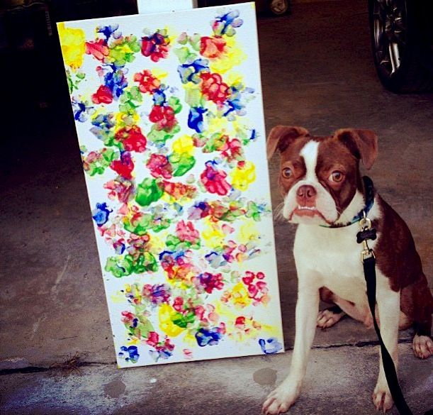 Use pet safe paint and let your pet create a masterpiece. Also stamp your hand in one color and your dog's paw print over it in another as a symbol of your friendship.