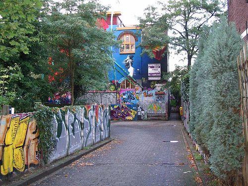 Doornroosje in Nijmegen by inertia_pt, via Flickr