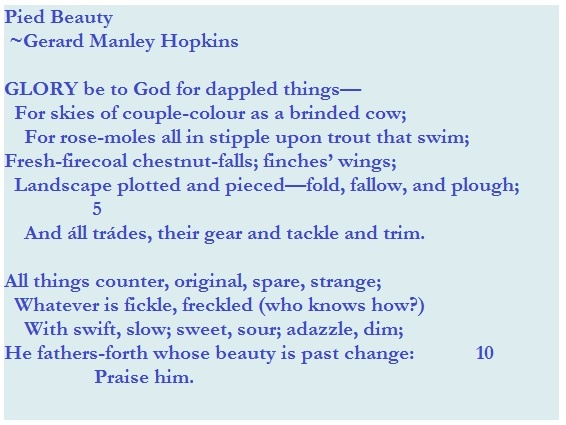 an analysis of the windhover a poem by gerard manley hopkins A reading of gerard manley hopkins's the windover for he creates a carefully ordered poem the windhover gerard manley hopkins.
