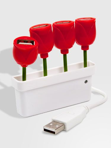 This gadget gives plenty of extra USB hubs and is super cute! (USB Tulip Hub, $24, FredFlare.com)