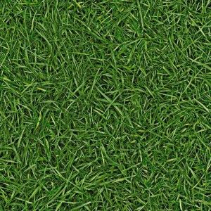 Bingo Cushion Vinyl Flooring Sheet 'Grass 025'