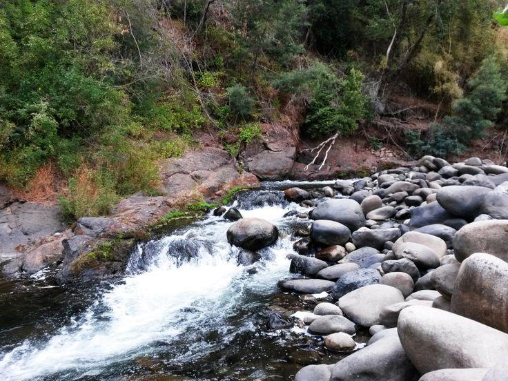 Vilches, Talca, Chile.