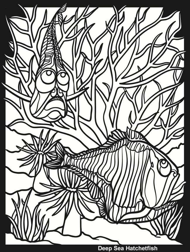 Welcome To Dover Publications Hatchet Fish