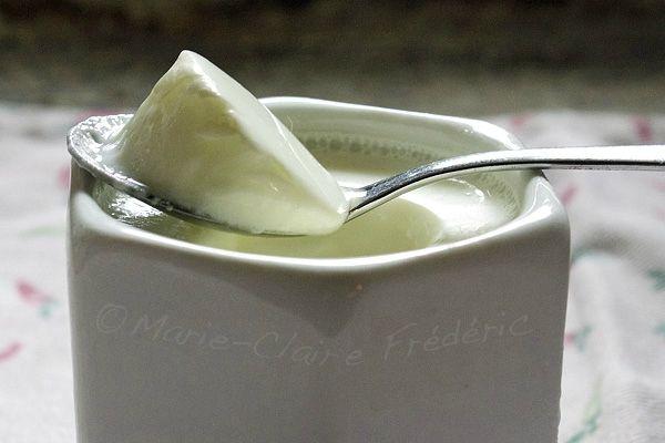 VEGETARIEN - Pourquoi faire ses yaourts maison ? Voici 8 bonnes raisons.