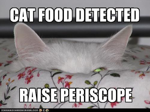 RAISE PERISCOPE