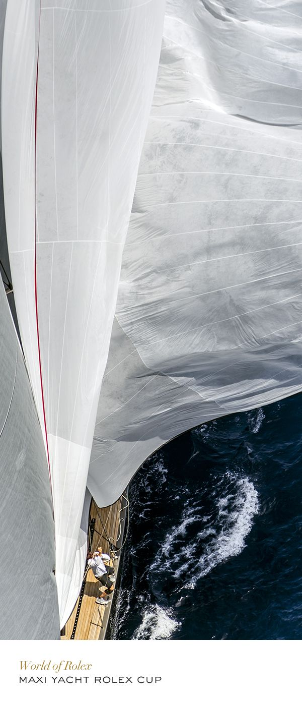Maxi Yacht Rolex Cup. #Yachting #RolexOfficial