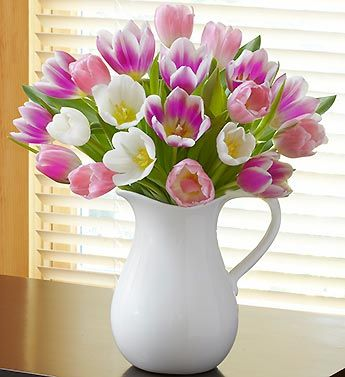 Pitcher Full of Tulips  EXCLUSIVE In gardens everywhere, tulips are a welcome sign of Spring. This sunny bouquet of assorted tulips, hand-arranged in a charming, reusable white pitcher, serves up the vibrant beauty of the season for every celebration.