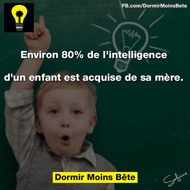 Environ 80% de l'intelligence d'un enfant est acquise de sa mère.