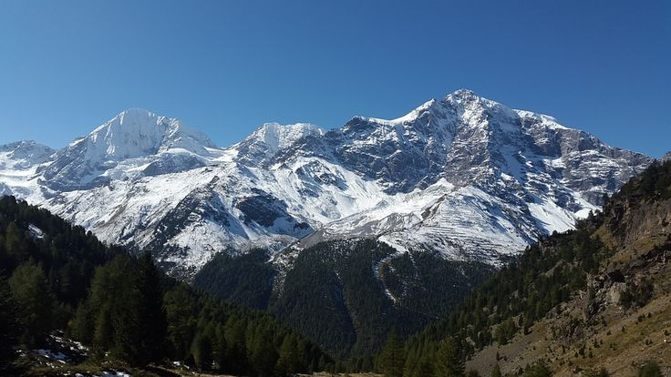 Ortler, Königsspitze, Tyrol Du Sud, Zebru, Gran Zebru