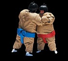 Sumo Wrestling  Popular with company picnics, teambuilding, high school grad nights and lock-ins, church socials, college campus events, fundraising carnivals, business promotions and a lot more!