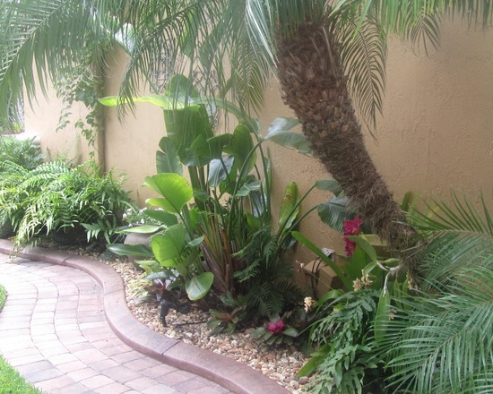 tropical landscape patios design pictures remodel decor and ideas page 14