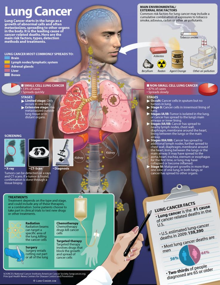 Everything there is to know about lung