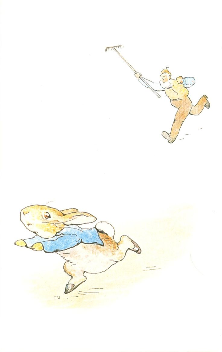 'The Tale of Peter Rabbit' by Beatrix Potter