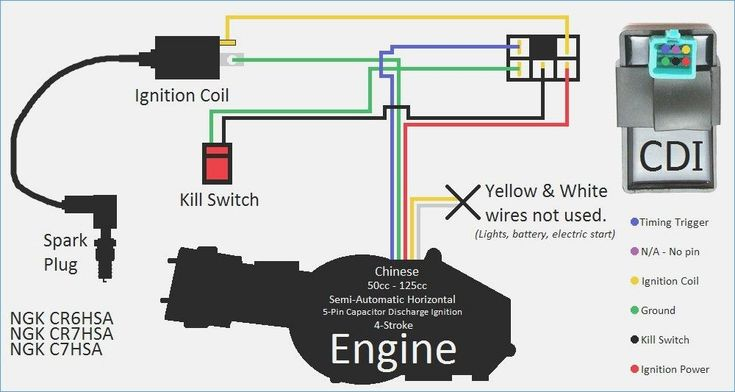 Ignition Kill Switch Wiring Schematic, Gy6 Electric Choke Wiring Diagram