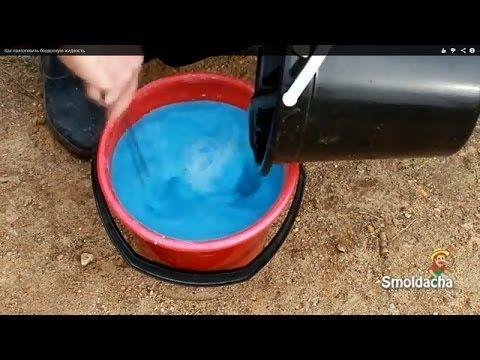 Как приготовить бордоскую жидкость - YouTube