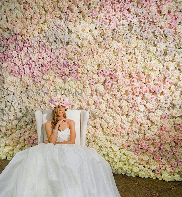 Pastel paradise in watercolor... Gorgeous roses from @rosaprimaroses for #ktbrisbane hosted by the lovely @celebrationsbyalysia and @bellabloomfloraldesigns || supported by @avideas_ || Photo @tedandliphotography_daily_life || #karentran #flowerwall #dreamwedding #weddinginspo #weddingdecor #weddingflowers