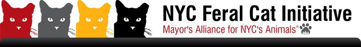 """The New York City Feral Cat Initiative (NYCFCI) is a program of the Mayor's Alliance for NYC's Animals that is committed to solving NYC's feral cat overpopulation crisis through the humane, non-lethal method of Trap-Neuter-Return, or TNR for short."""