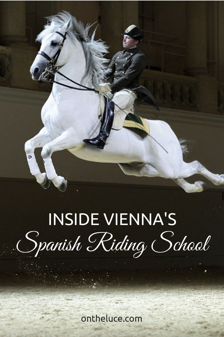 Inside Vienna's Spanish Riding School – Europe's oldest and best-known riding school, Austria