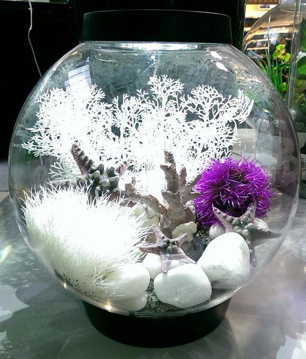 Biorb. White and purple.