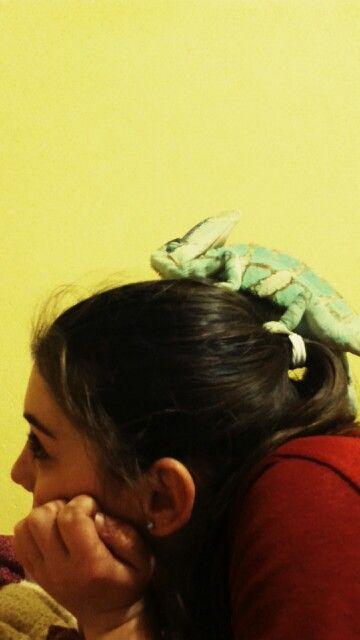 My chameleon on my head