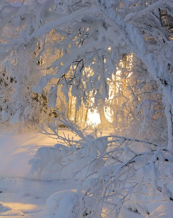 Even our long winters can be stunning and full of beauty.