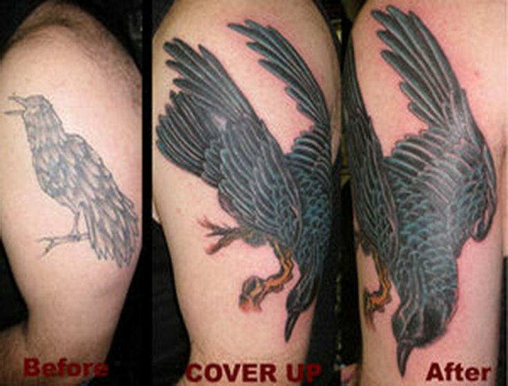 black crow tattoo | Download crazy crow tattoo cover up designs