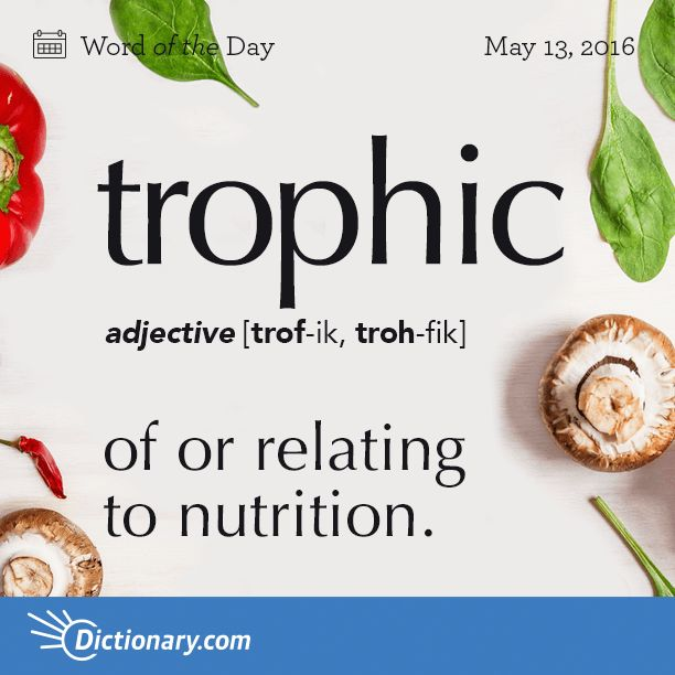 Get the Word of the Day - trophic | Dictionary.com