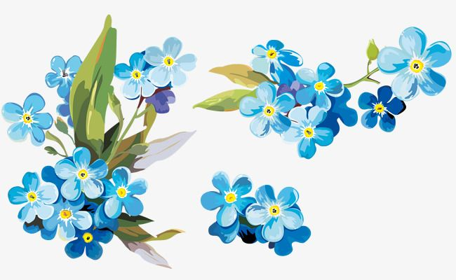 Watercolor Blue Floral Decoration Pattern Watercolor Clipart