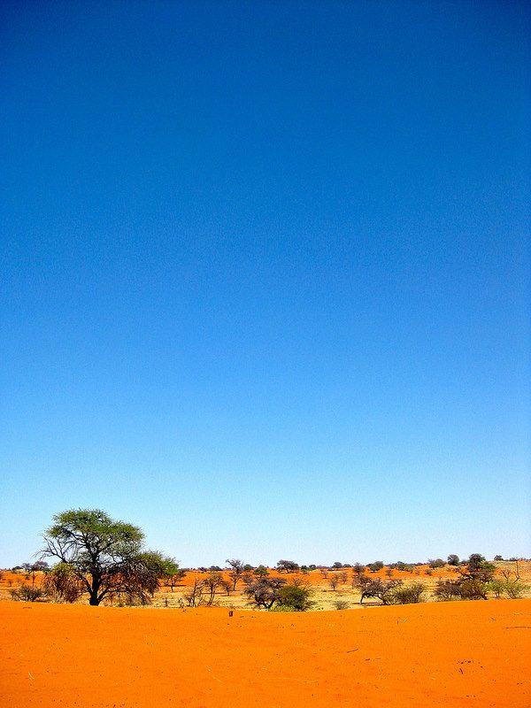 #KalahariDesert, #Namibia, #Photography