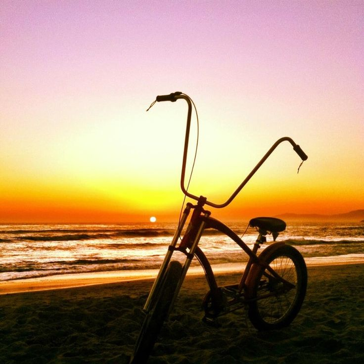 17 Best Cruisin Images On Pinterest Beach Cruisers Bicycles And Ventura Bike Als