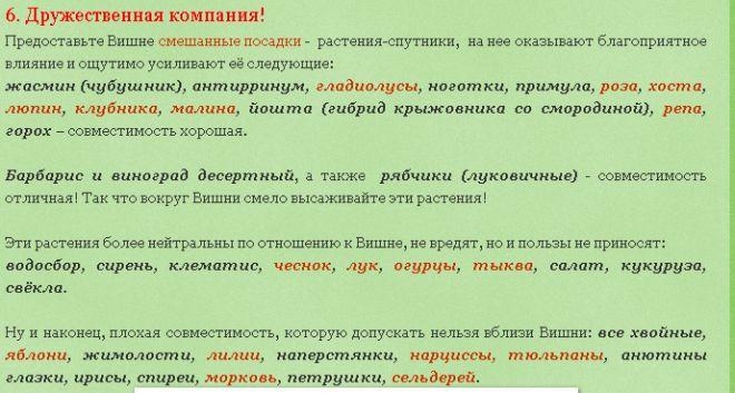 Уральский огород - без особых хлопот!: ВЫРАЩИВАНИЕ ВИШНИ В ПРИРОДНОМ ЗЕМЛЕДЕЛИИ!