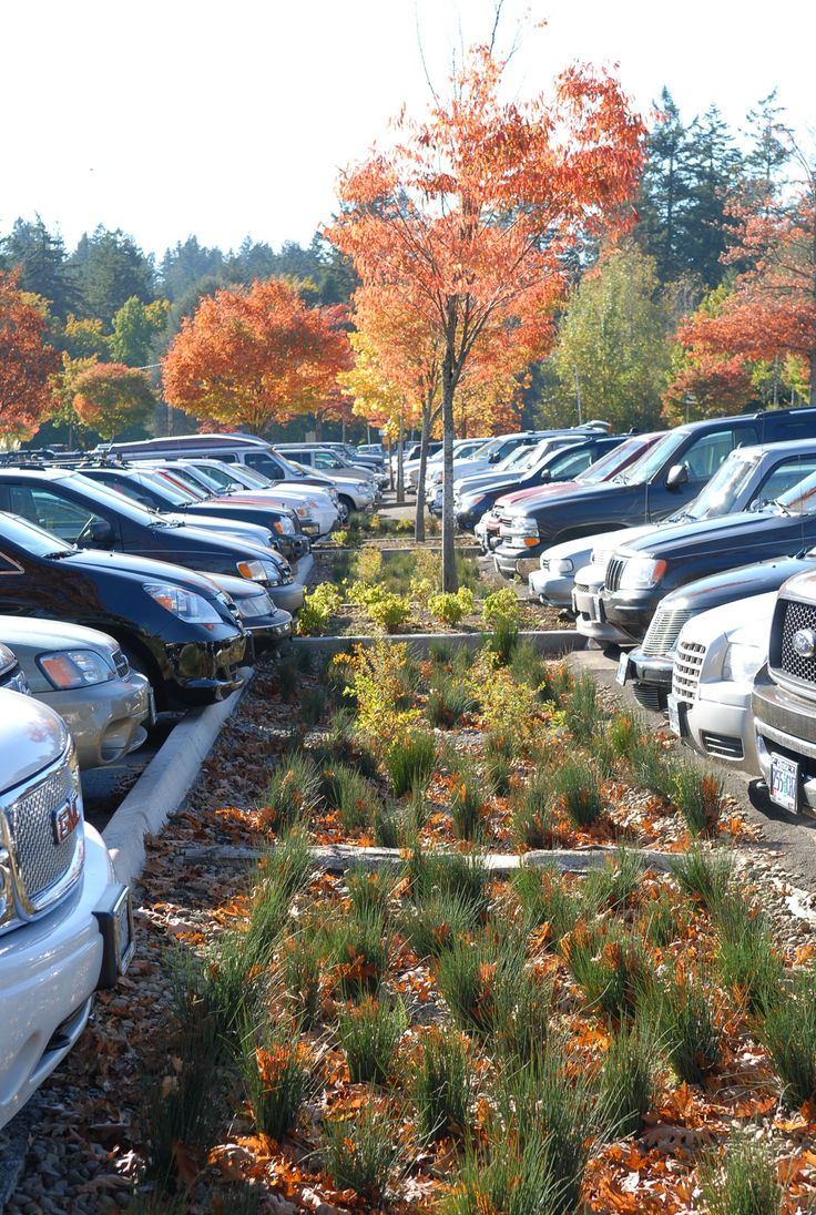 Bien-aimé 66 best parking images on Pinterest | Landscape architecture  TK03