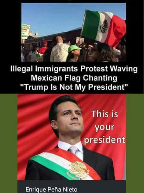 You're correct - Trump is NOT your President. Enrique Peña Nieto is. You have ABSOLUTELY NO RIGHTS IN AMERICA.